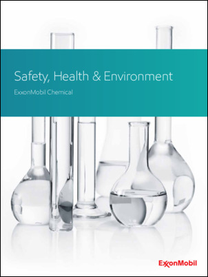 Safety, health & the environment in Intermediates